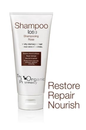subgroup_shampoos